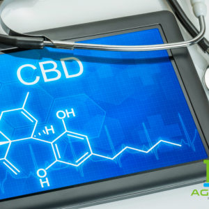 Key Differences Between THC and CBD