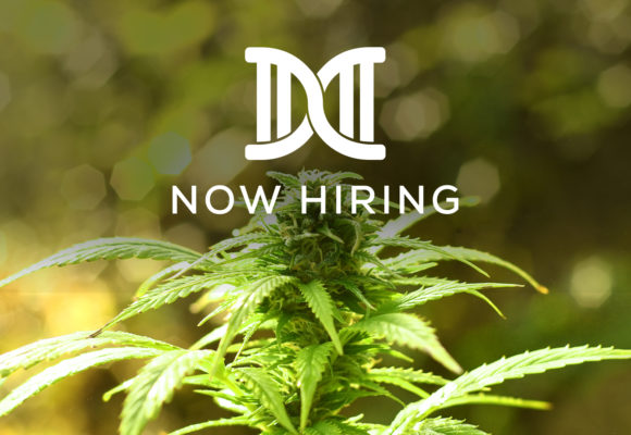 Now Hiring for Cannabis Industry Professionals in Pennsylvania